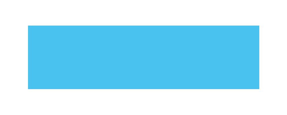 netcredit-vizia-logo